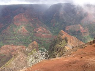 WaimeaCanyon-copy