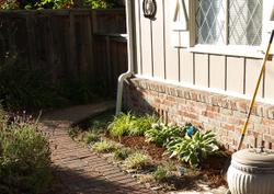 Foundation_garden