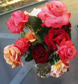Moms_roses