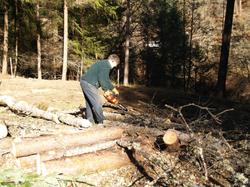 Day_2_lumberjack
