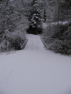 Our_bridge