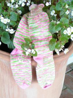 Ks_whatamelon_socks