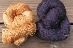 Pumpkinblack_purple
